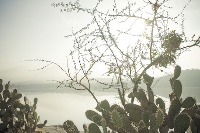 Landscape - Mexico I